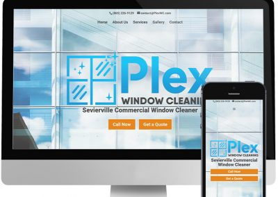 Plex Window Cleaning